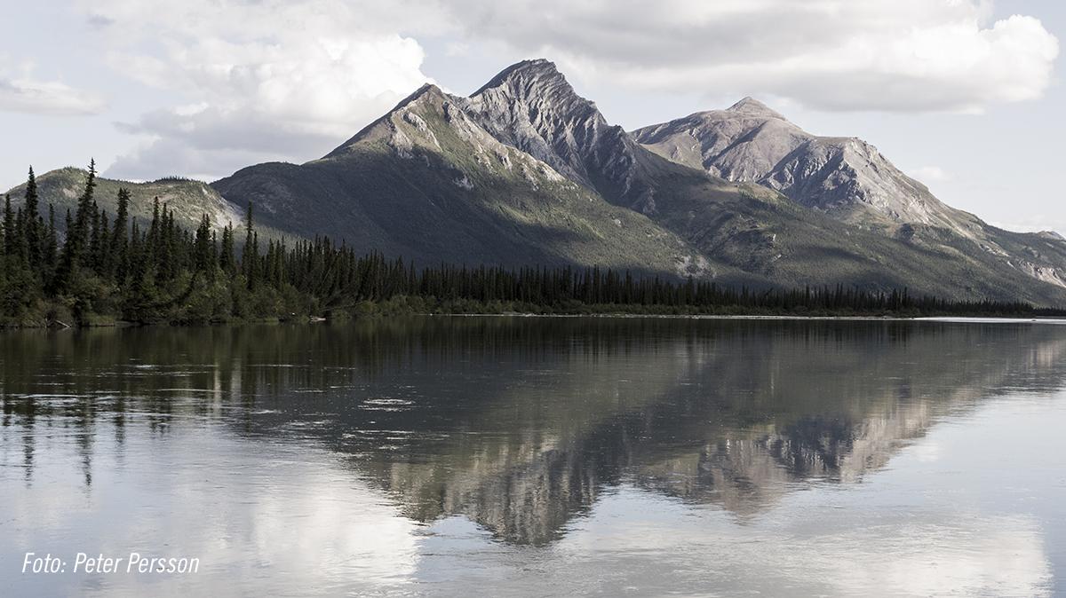 Alaska_Mountain_inivildmarken