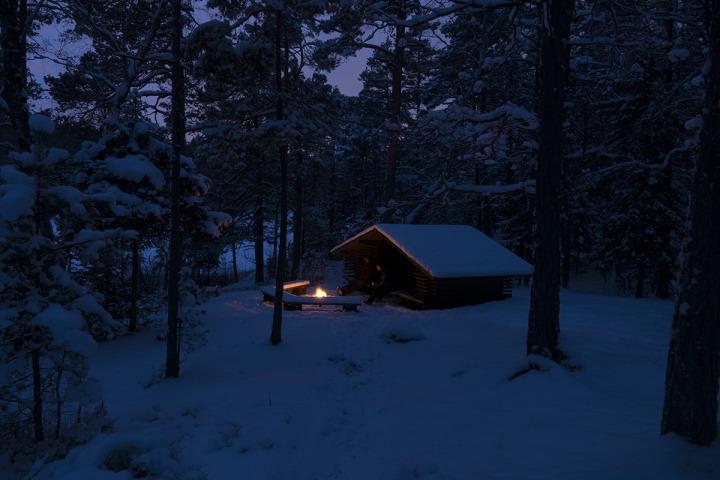 Vinter_vindskydd_skog_peter_persson