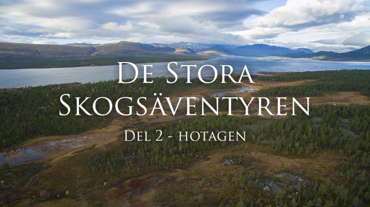De_stora_skogsaventyren_hotagen_2