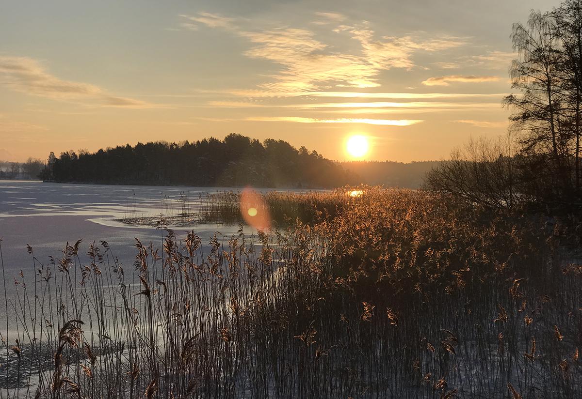 soluppgang_vinter
